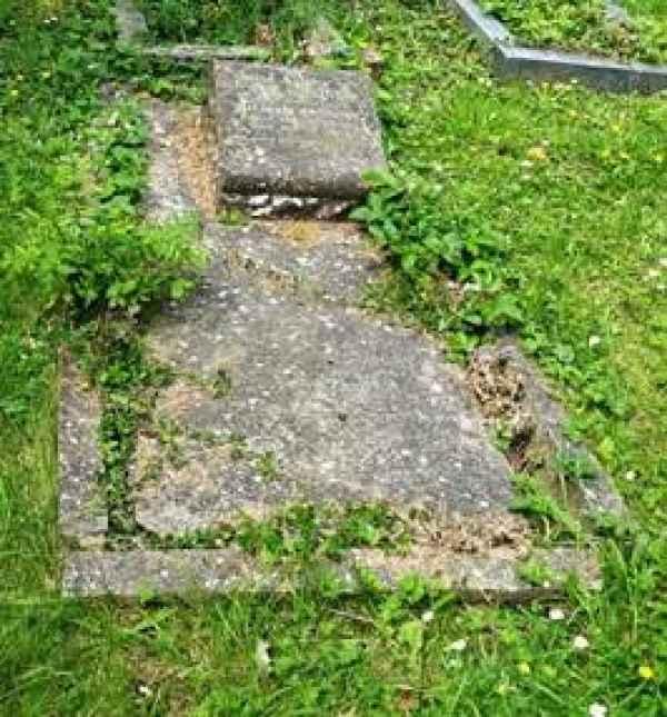 Ann Parkins plot