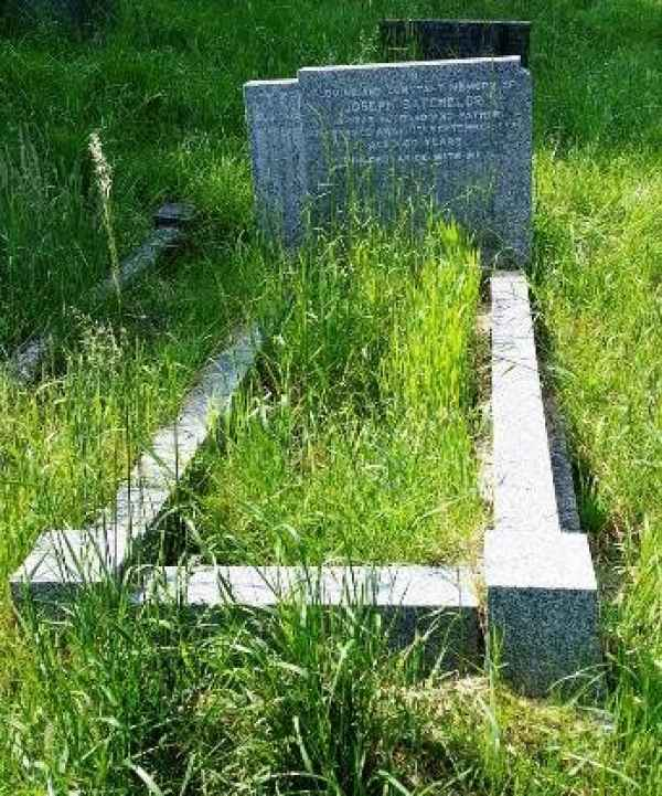 Batchelor plot