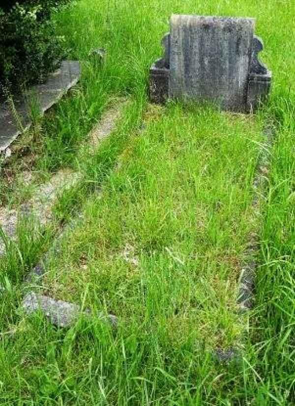 Darvill plot