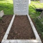 Eliza Wood plot