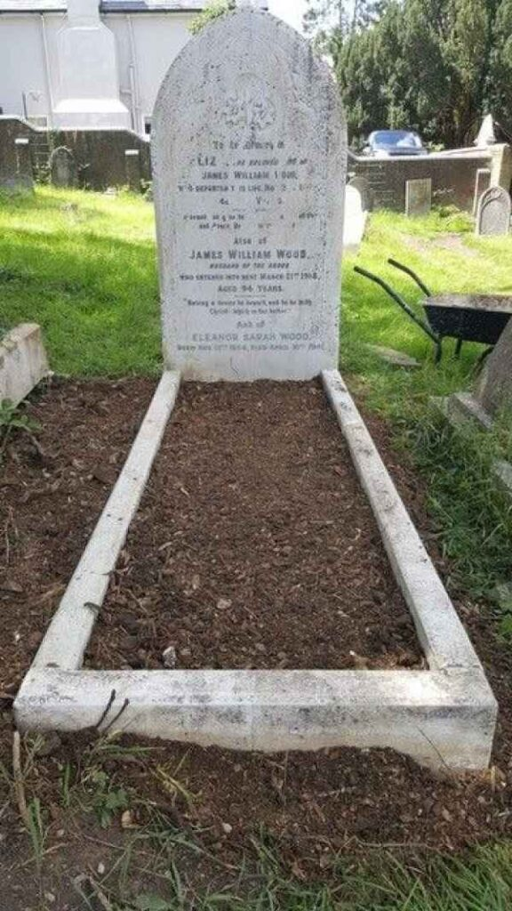 Eliza Wood plot