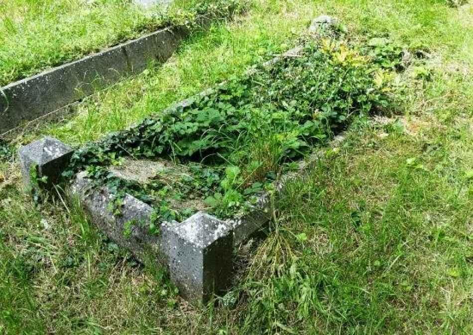 Ethel Beatrice Meek plot