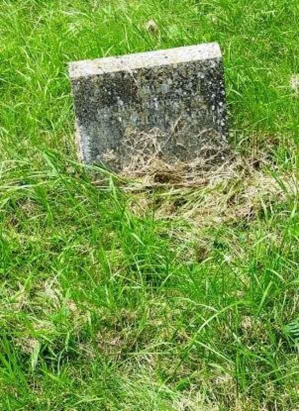 Ethel Evaline Cargill plot