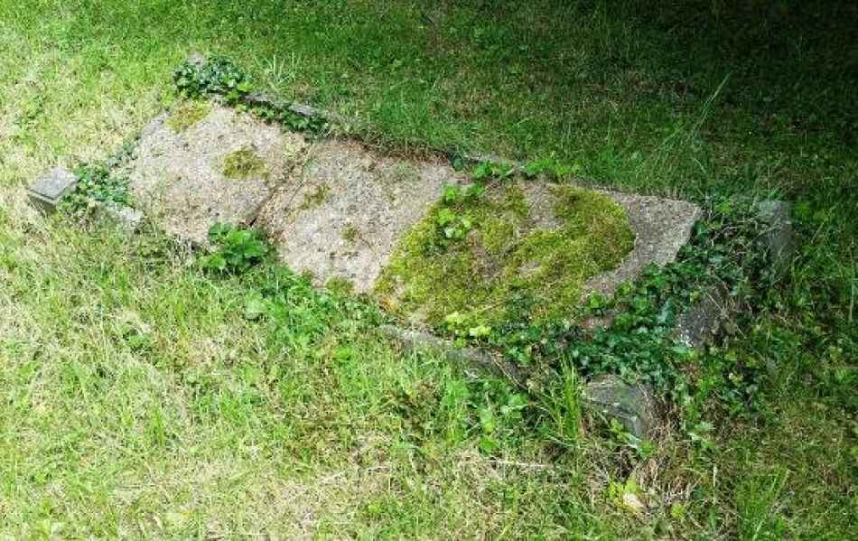 Florence M.M Westgate (1051) plot