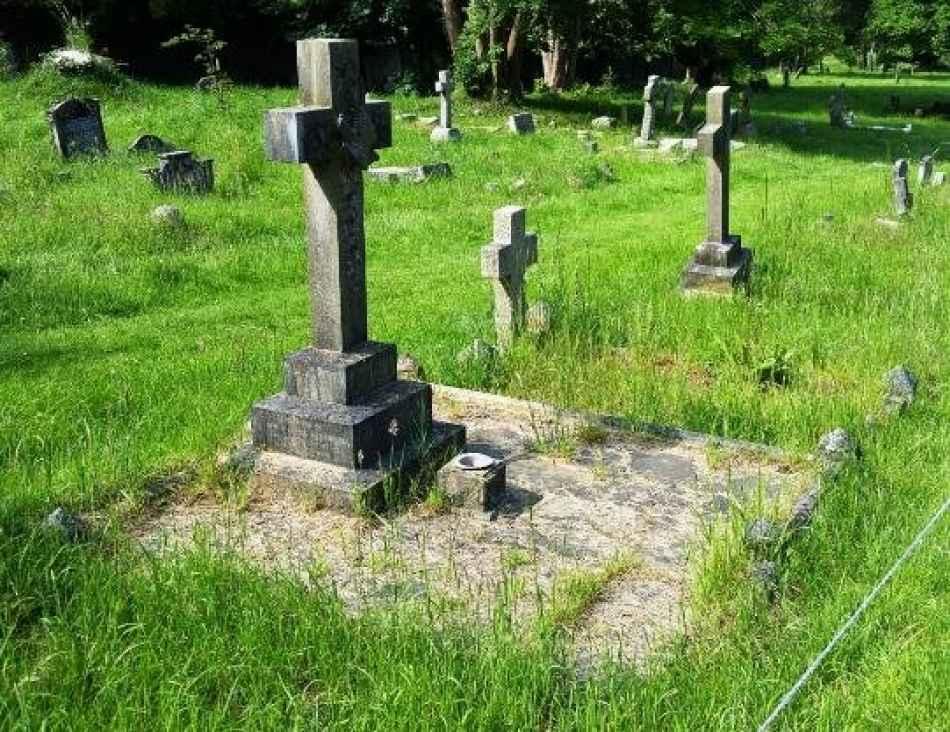 Harrowell plot