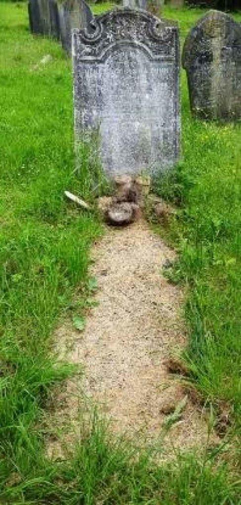 Henrietta Rosina Bunn plot