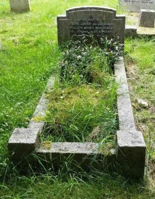 Irene Daisy Mansfirld  (1138) plot
