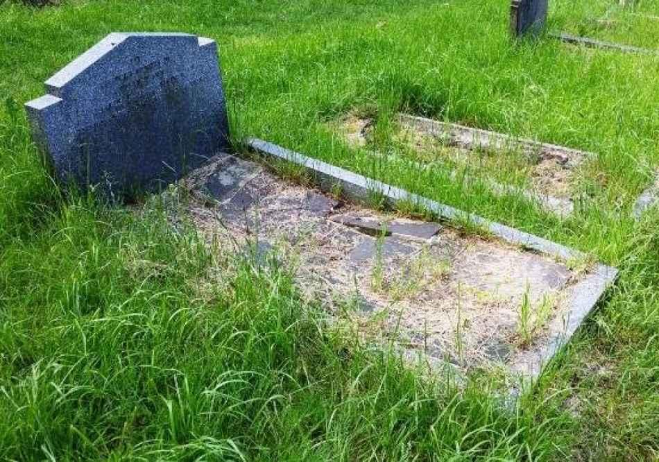 James Sidney Hides (746) plot