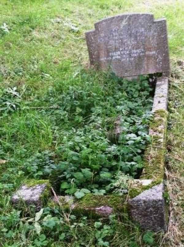 Lavinia Ann Jones (1147) plot