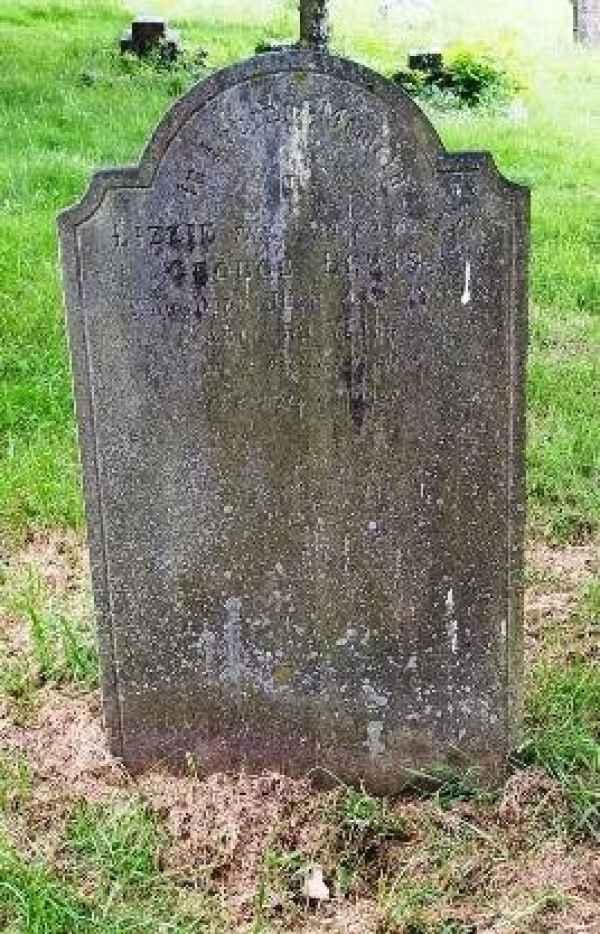 Lizzie Lewis (919) plot