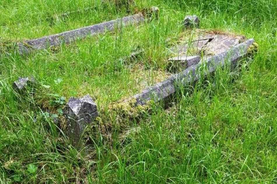 Mardle plot