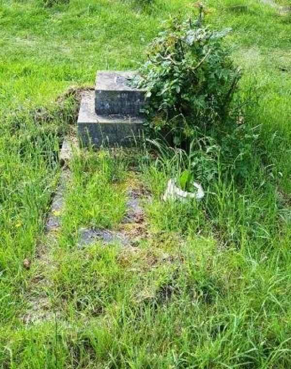 Mary Mildred Raines (804) plot