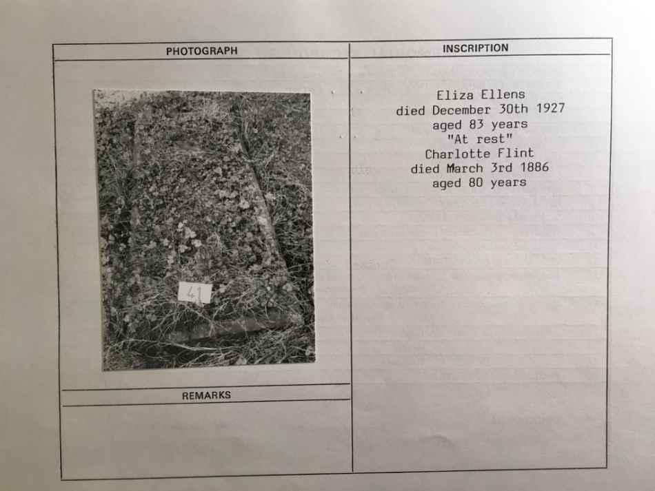 Plot for Flint, Ellens