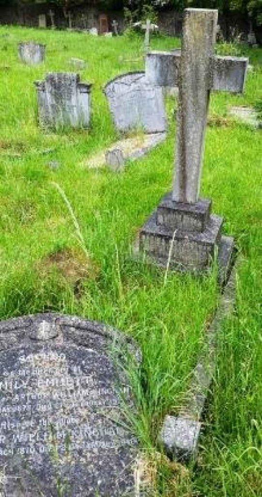 Plot for Gravestock & Lothian