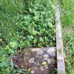 Plot for Meadows , Meadows
